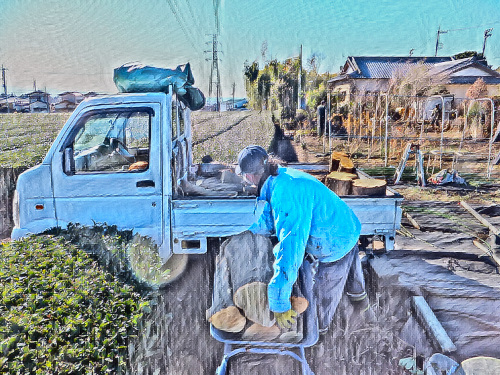 一輪車が大活躍の薪狩り