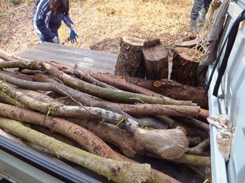 積み込んだ木