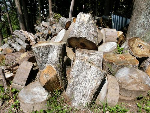 クヌギなどの木の山
