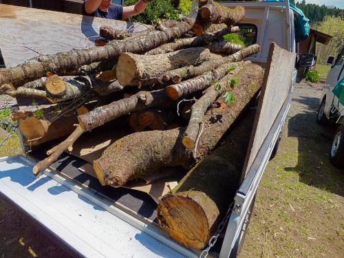 車一杯に積んだ木