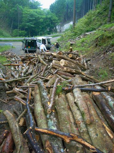 大量の木の薪狩り