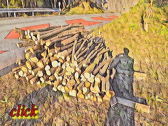 木を持って行って欲しい! 薪情報募集