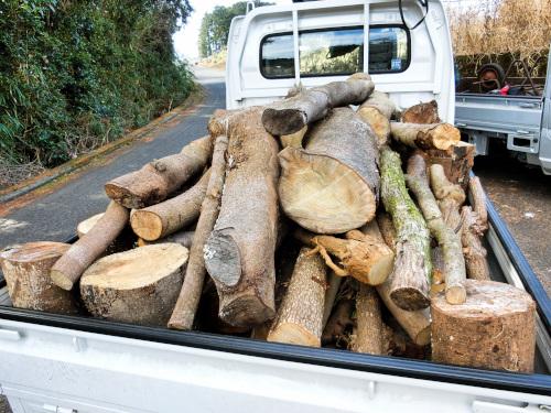 車満載の木