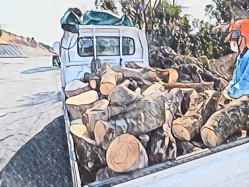 車一杯の木