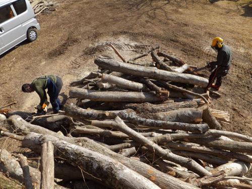 山積みの木の木を切る