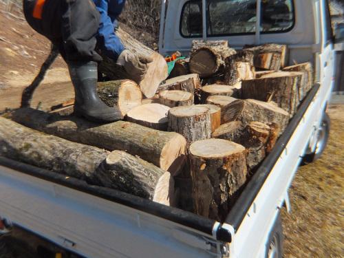 軽トラックに玉切りした木を積む