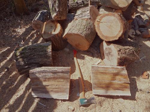 クヌギを斧で薪割りする