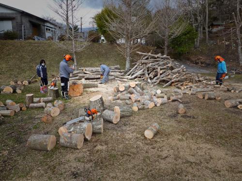 進捗良い薪狩り